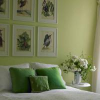 Groene muur - Huidige kleur voor de kamer ...